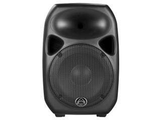 "Active Black 300W 12"" 2-Way ABS Moulded Speaker"