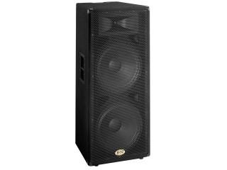 """Double 15"""" Passive Speaker"""