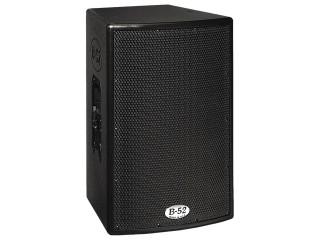 """High powered 12"""" passive speaker"""