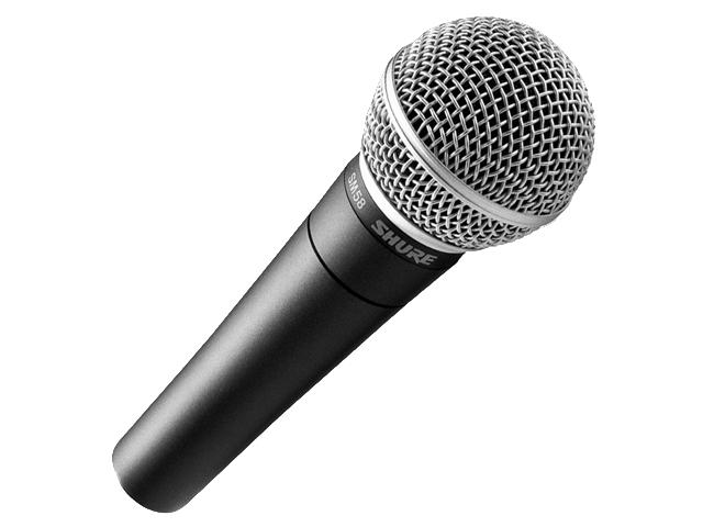 Shure SM58 Microphone w/o switch